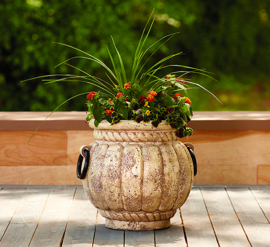handled jar planter