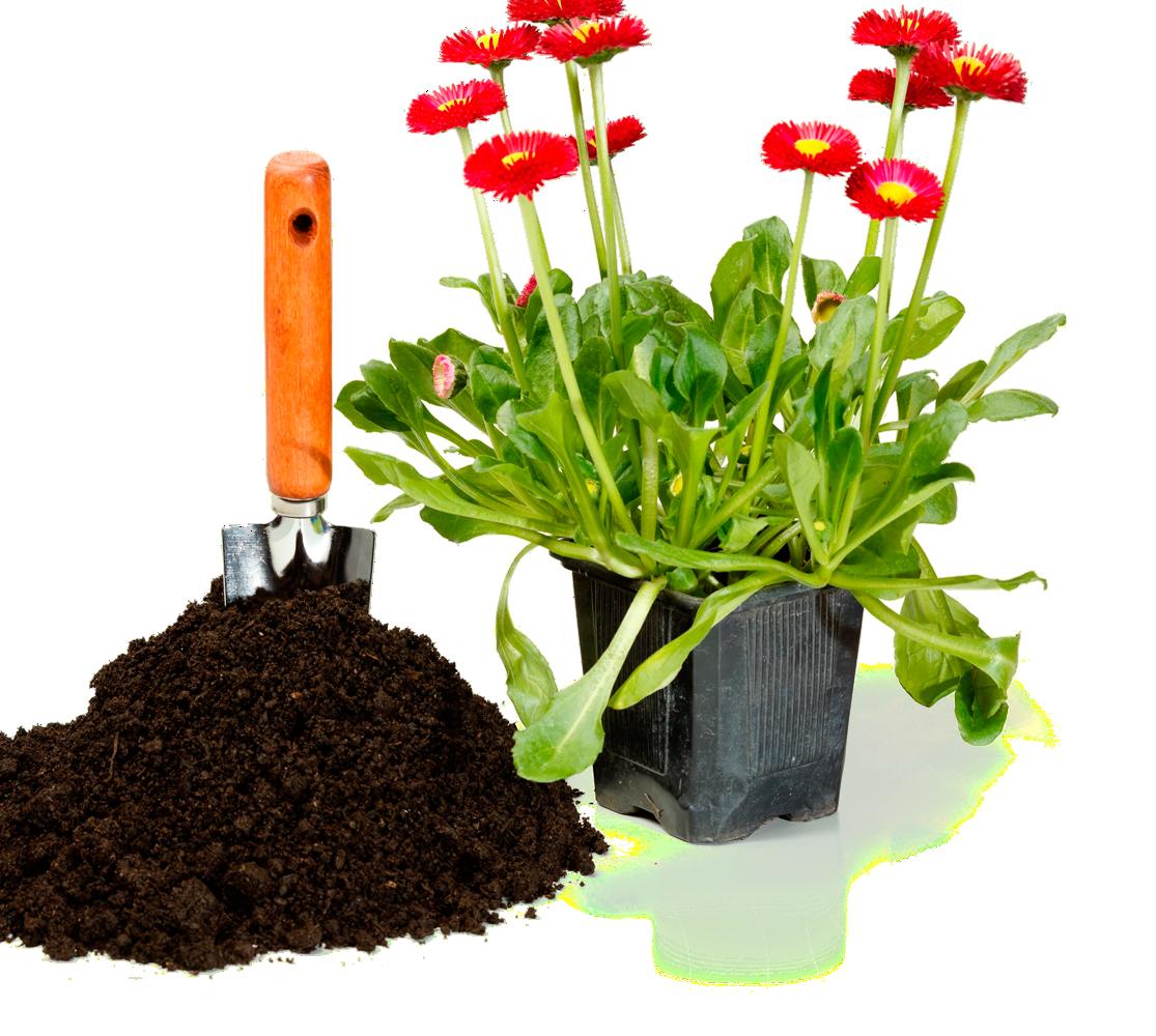 arrange-and-plant