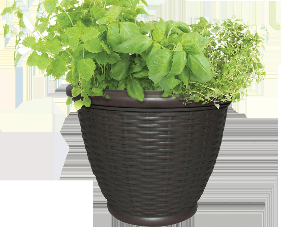 full-planter