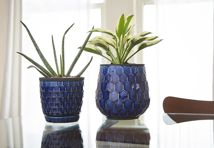 honeycomb planters