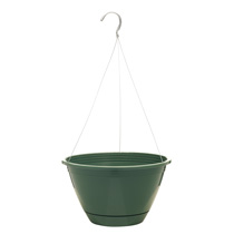 10 inch Promo Hanging Basket - Fern