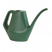 Dynamic Design'® 28 Ounce Watering Can, Fern