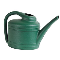 1 Gallon Fern Watering Can