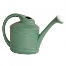 2 Gallon Fern Watering Can