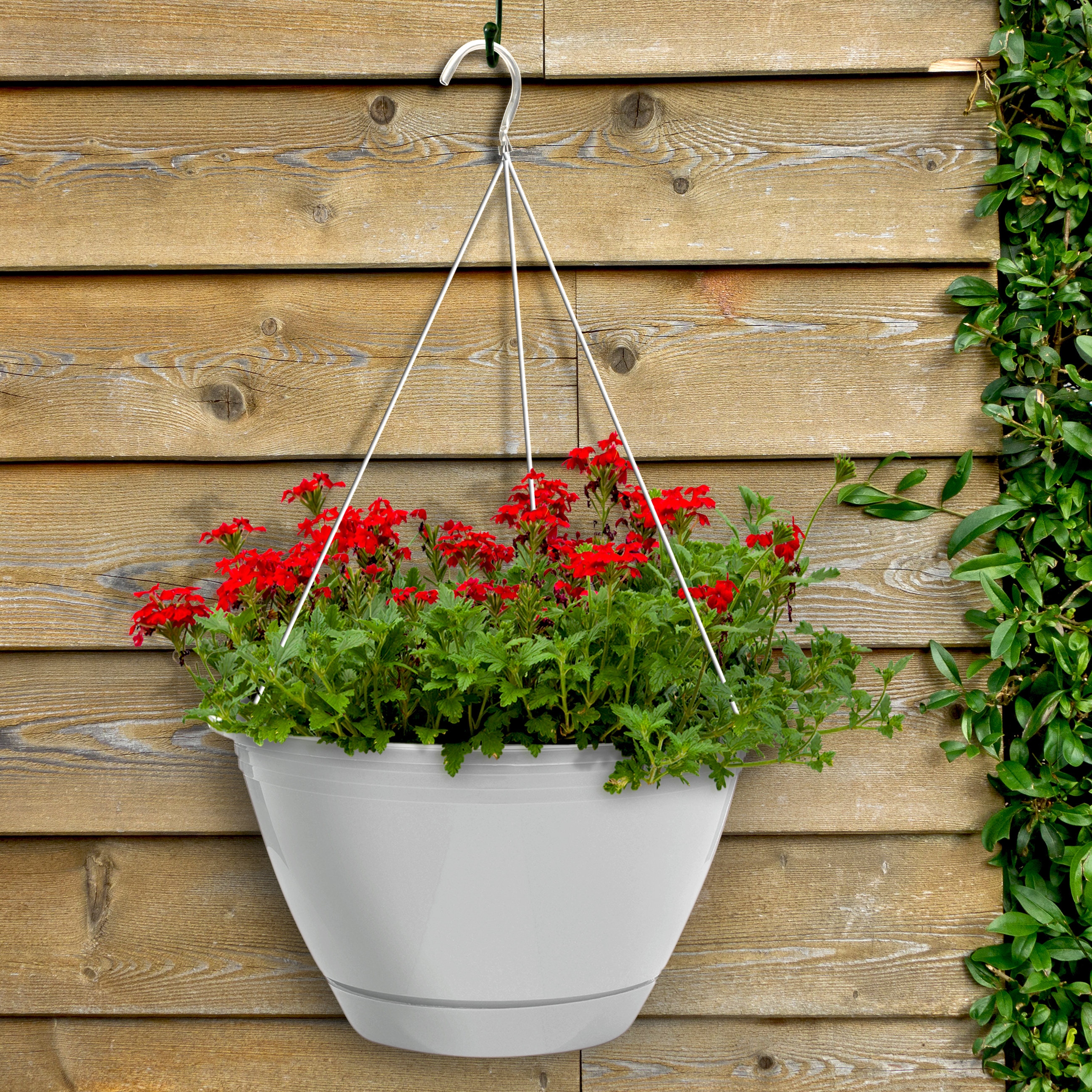 Dynamic Design 10 Promotional Hanging Basket Fern Southern Patio