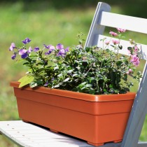 "24"" Promo Window Box, TerraCotta"
