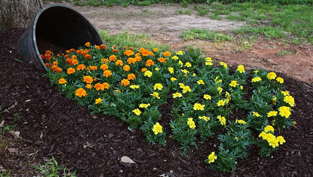 Spilled Flower Garden Whiskey Barrel