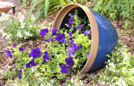Planters-in-Landscape-5