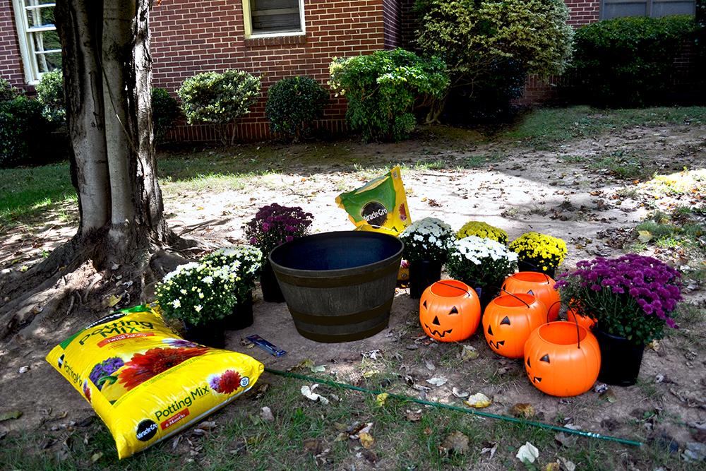 Fall Mums Pumpkin Topiary Southern Patio