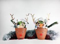 reindeer gardening projects