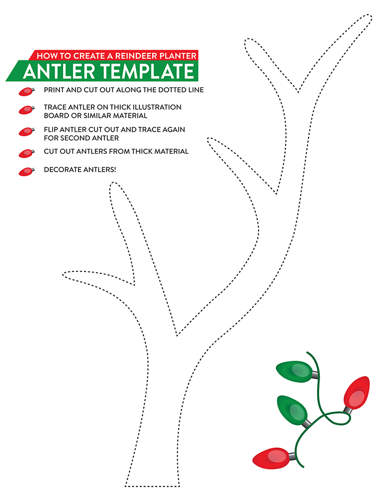 colorful antlers template ornament example resume ideas