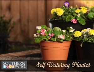 Benefits of Self Watering Planters