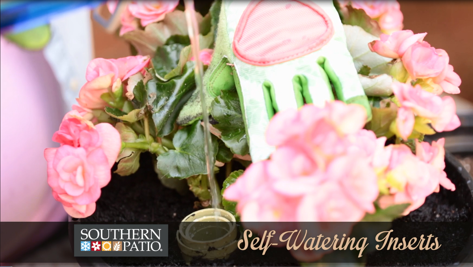Decorative Watering Cans Video How To Use A Self Watering Insert Southern Patio
