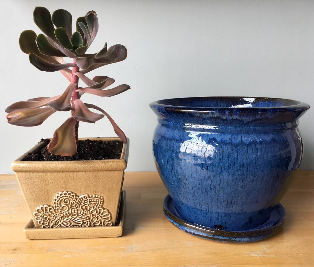 Provence Pot to Wisteria Pot