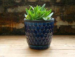Honeycomb Pot