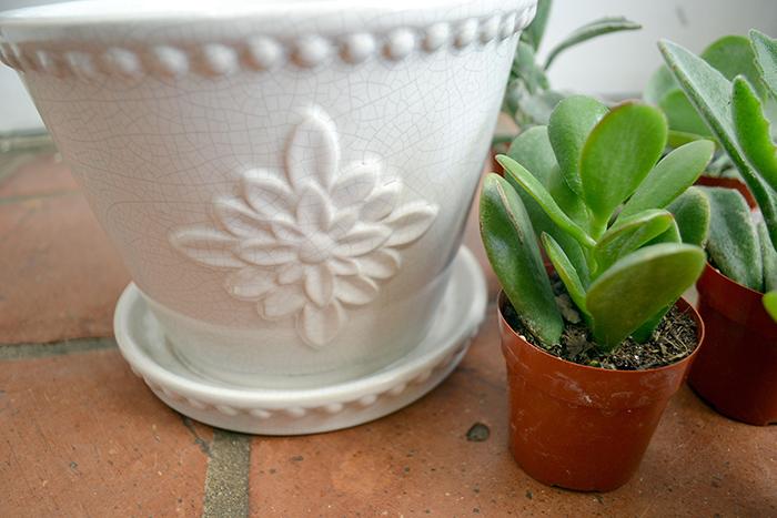 2 Lorna-Pot
