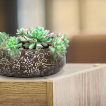 ceramic bowl planter