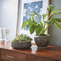 "Ceramic Bowl, 10"" Gracie 2-Piece Planter Set in Deep Gray"