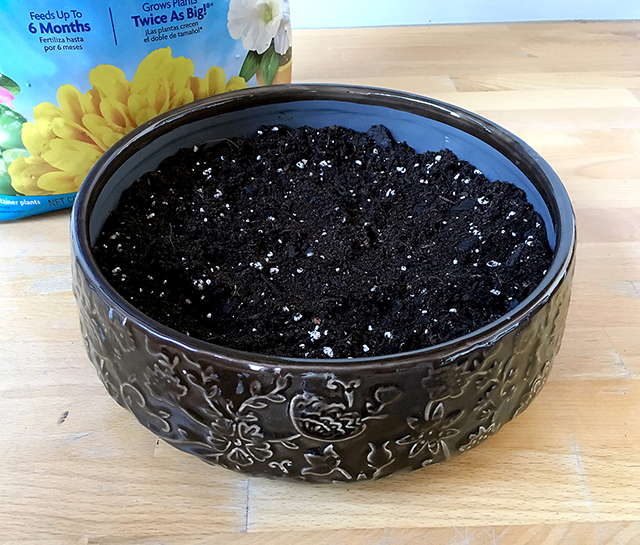 Add a layer of potting soil