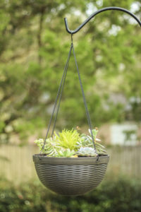 Hanging basket on a shepherd's hook