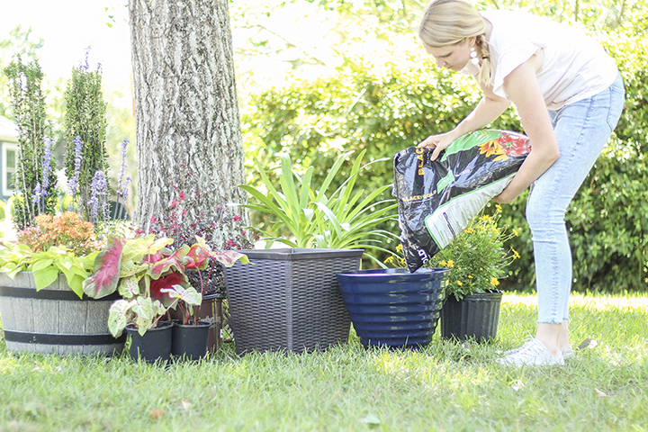 3 Ways Gardening Can Relieve Your Stress