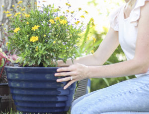 gardening as stress relief