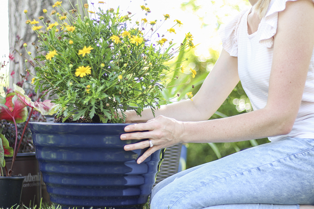 gardening as stress relief