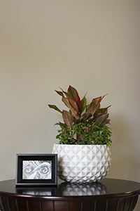 Pineapple bowl planter