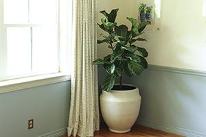 Horizontal shot of Southern Patio Monroe Planter in corner of room
